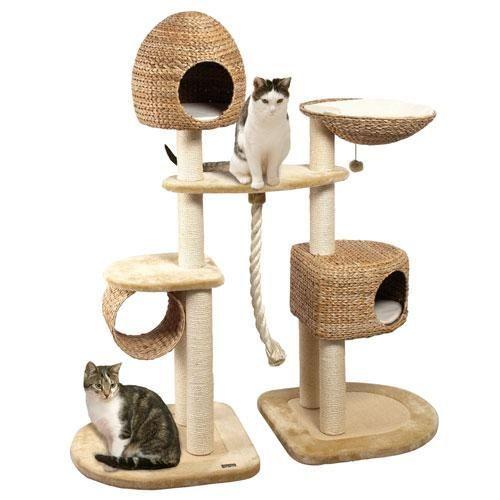 Домик для кошки с котятами своими руками фото